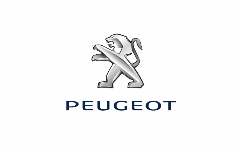 peugeot-407-other-notification-of-recall20150620-4
