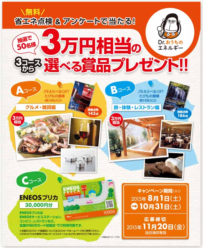 eneos-energy-diagnostic-services-dr-ouchi-of-energy-campaign20150726-1