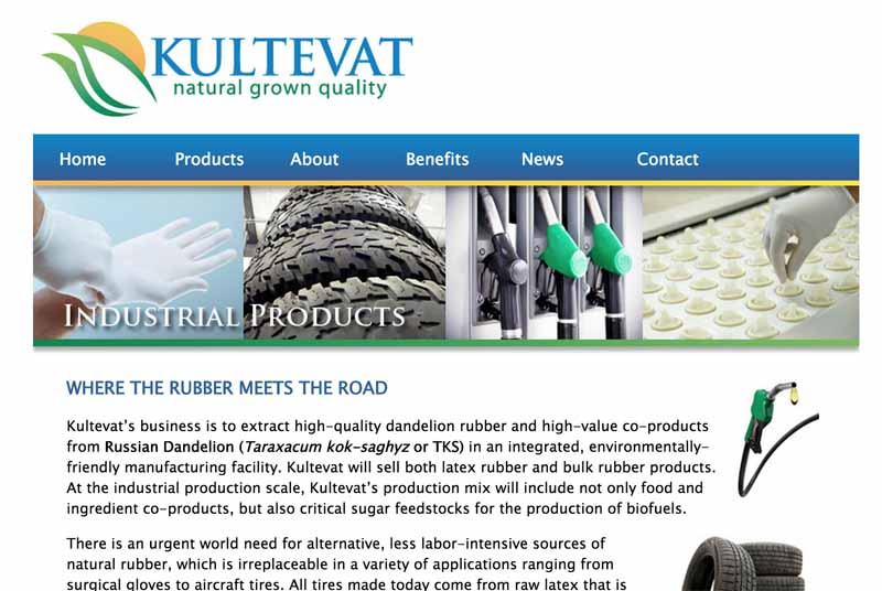 sumitomo-rubber-to-start-a-joint-study-of-the-us-company-as-russian-dandelion-as-a-new-natural-rubber-resources20150807-2