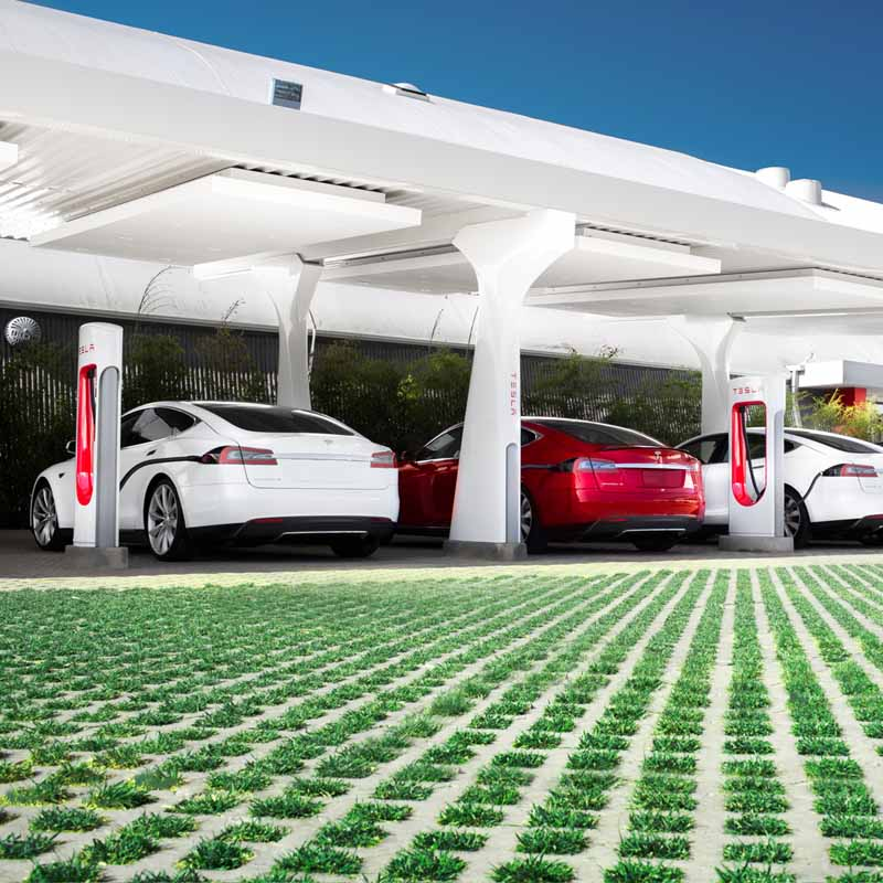 tesla-and-opened-an-online-shop-site20150819-3