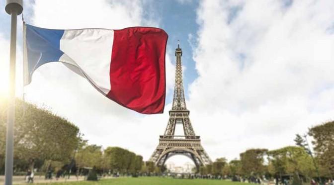 ルノー・ジャポン、湘南T-SITEのフランスフェアに協賛