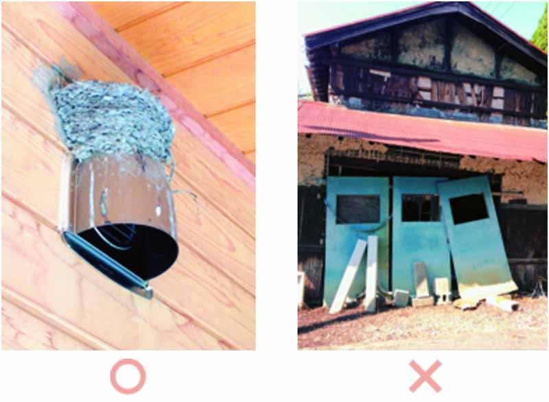 showa-shell-sekiyu-environmental-photo-contest-winners20151123-1