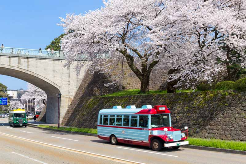placeholder-banquet-is-obsolete-rickshaw-cherry-blossom-viewing-in-private-car-cherry-blossom-viewing-superb-style-7-election-admire-the-cherry-blossoms20160319-2