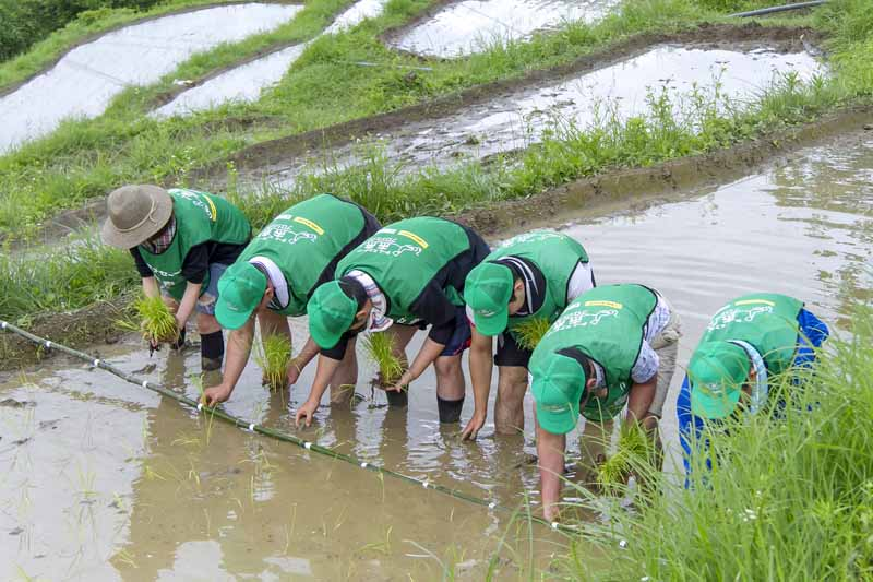sumitomo-rubber-industries-sponsor-of-the-rice-terraces-regeneration-project-of-toyota-mobility-fund20160311-5