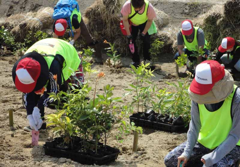 provide-seedlings-to-yokohama-rubber-a-thousand-years-hope-of-the-hill-in-the-miyagi-prefecture-iwanuma-tree-planting-ceremony20160404-2