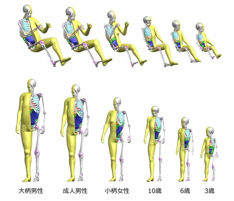 toyota-motor-corp-adding-a-child-model-in-virtual-human-body-model-thums-sale20160621-1