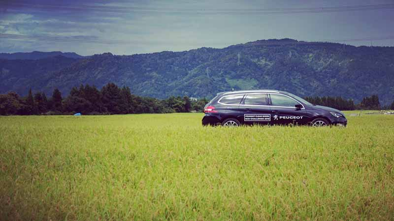 peugeot-the-peugeot-bluehdi-diesel-experience-test-drive-campaign-conducted20161008-1