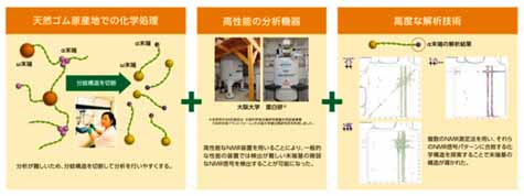 sumitomo-rubber-industries-announced-the-research-results-to-analyze-the-end-group-structure-of-natural-rubber20161027-3