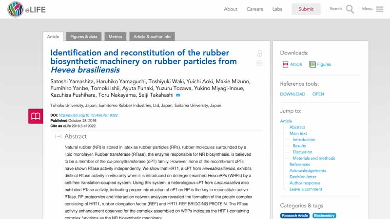 research-results-on-sumitomo-rubber-industries-natural-rubber-biosynthesis-organization-will-be-published-at-open-access-magazine-elife20161120-1