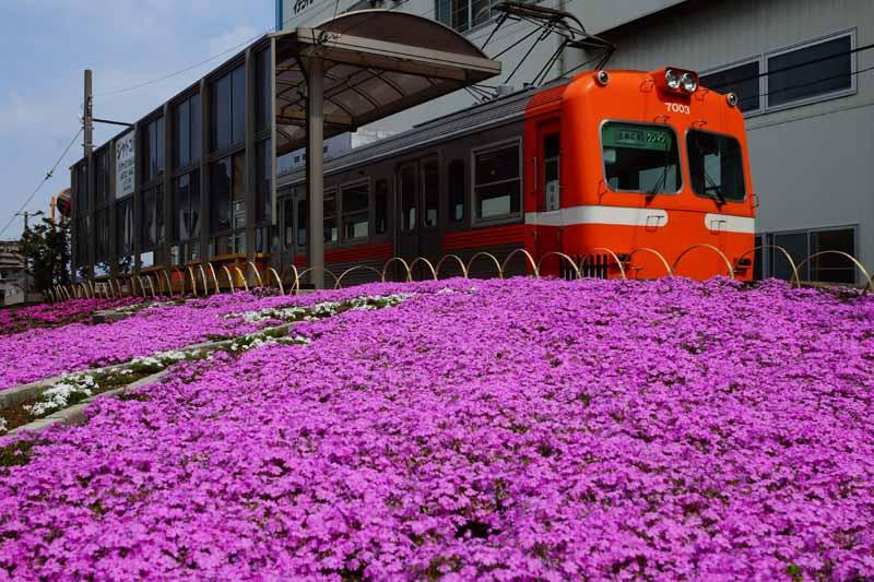 花咲く*ジヤトコ前駅